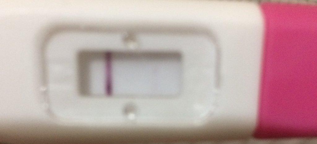 3D32FAD5-5C0D-4B9A-9277-7CA14C7AAD57.jpeg