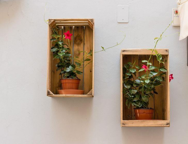 Ahşap bir kutudan yapılmış bir çiçek rafı.jpg