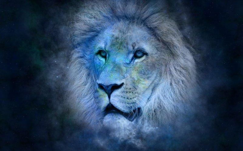 aslan-burcu-genel-ozellikleri.jpg
