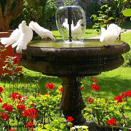 baignoire-fonte-attrayant-je-craque-pour-une-fontaine-de-jardin-21-05-2010-of-baignoire-fonte.jpg