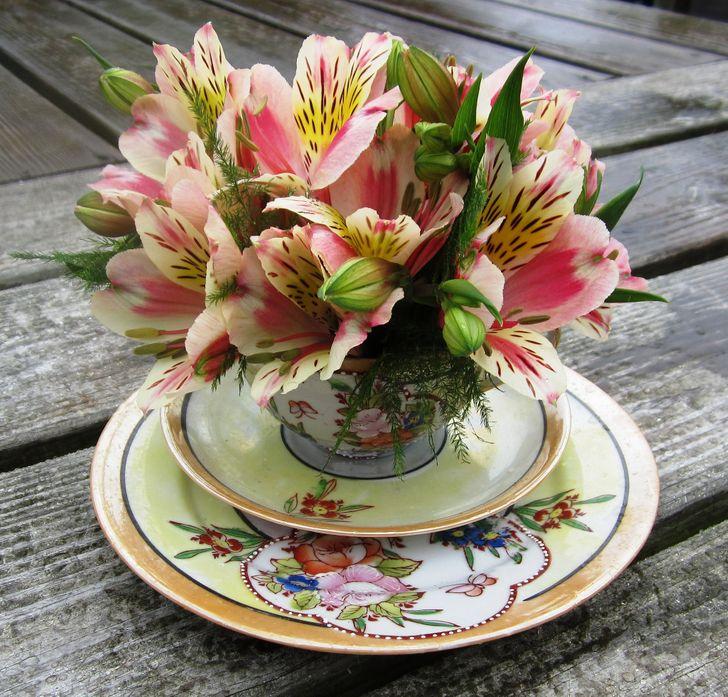Bir çay fincanı içinde çiçekler.jpg