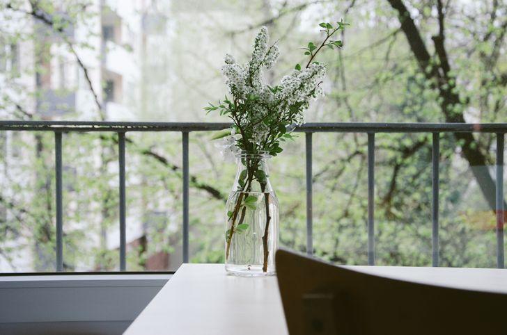 Çiçek açan ağaç dalları.jpg