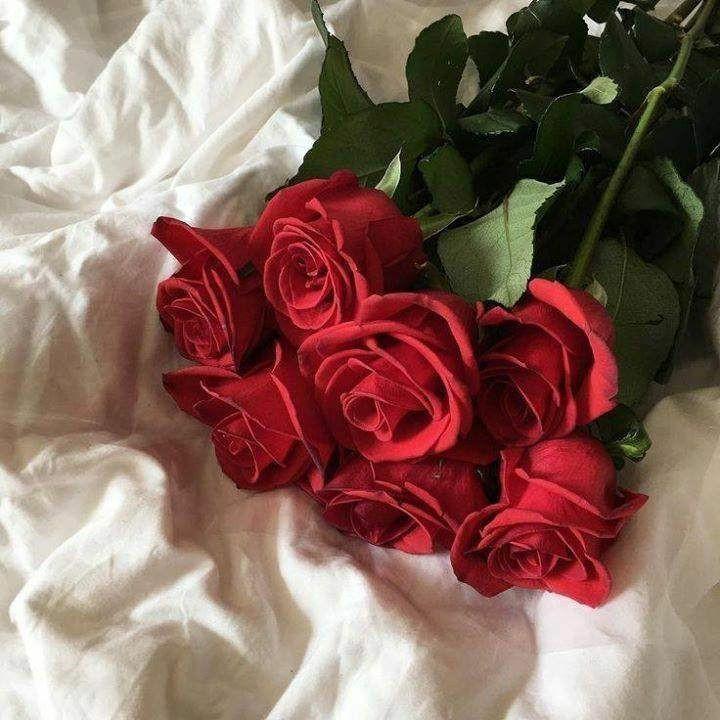 çiçek11.jpg