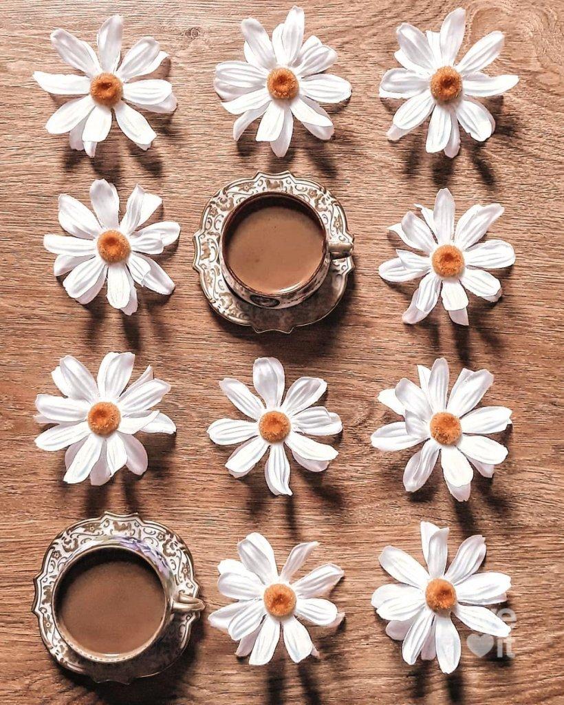 çiçek3.jpg