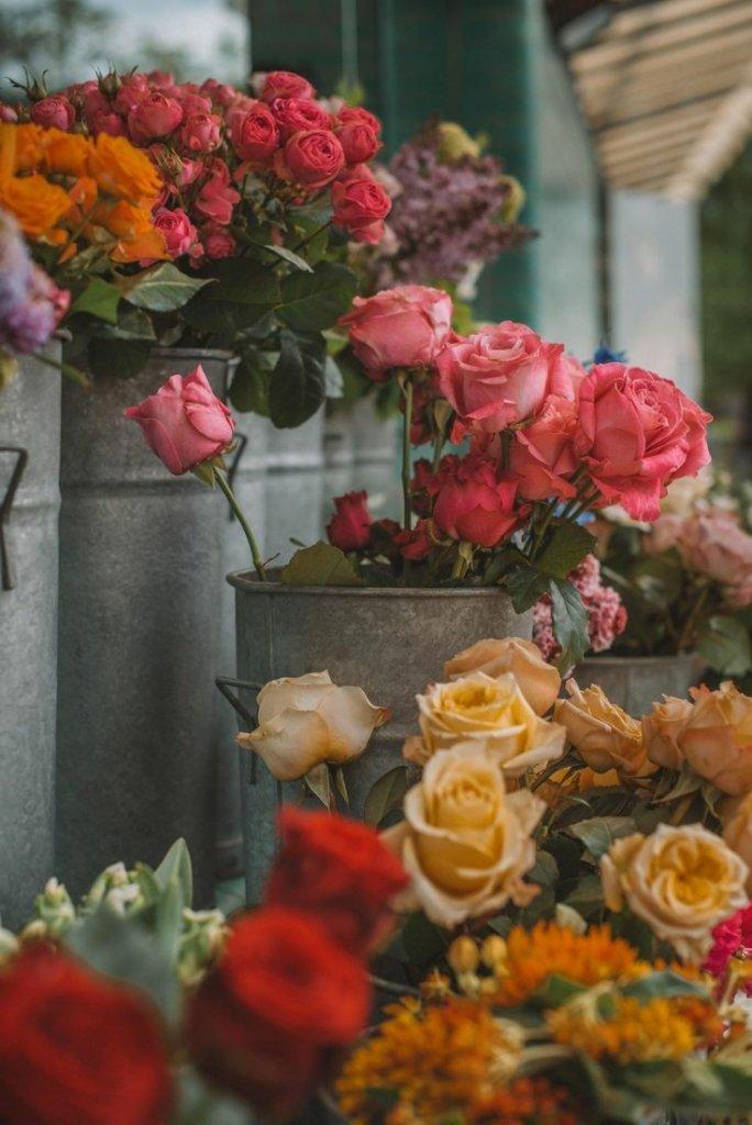çiçek9.jpg