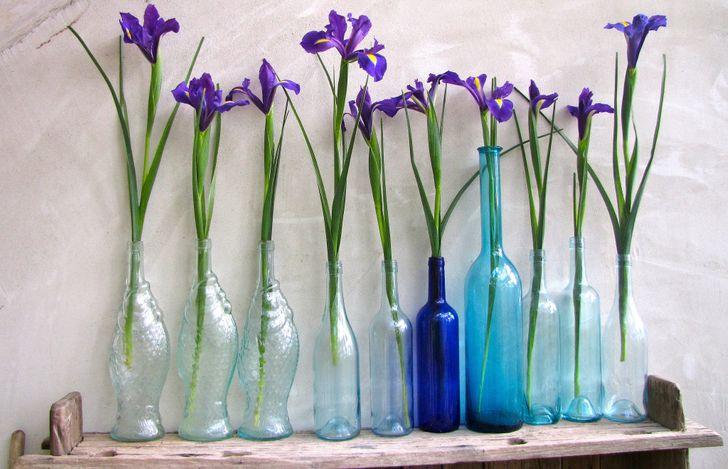Eski şişelerden yapılmış vazo koleksiyonu.jpg