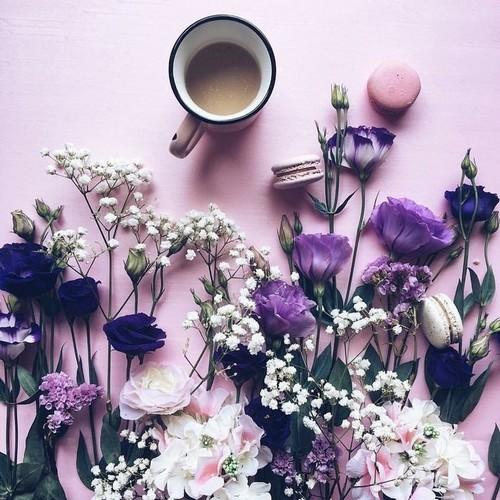 haftalık çiçek (2).jpg