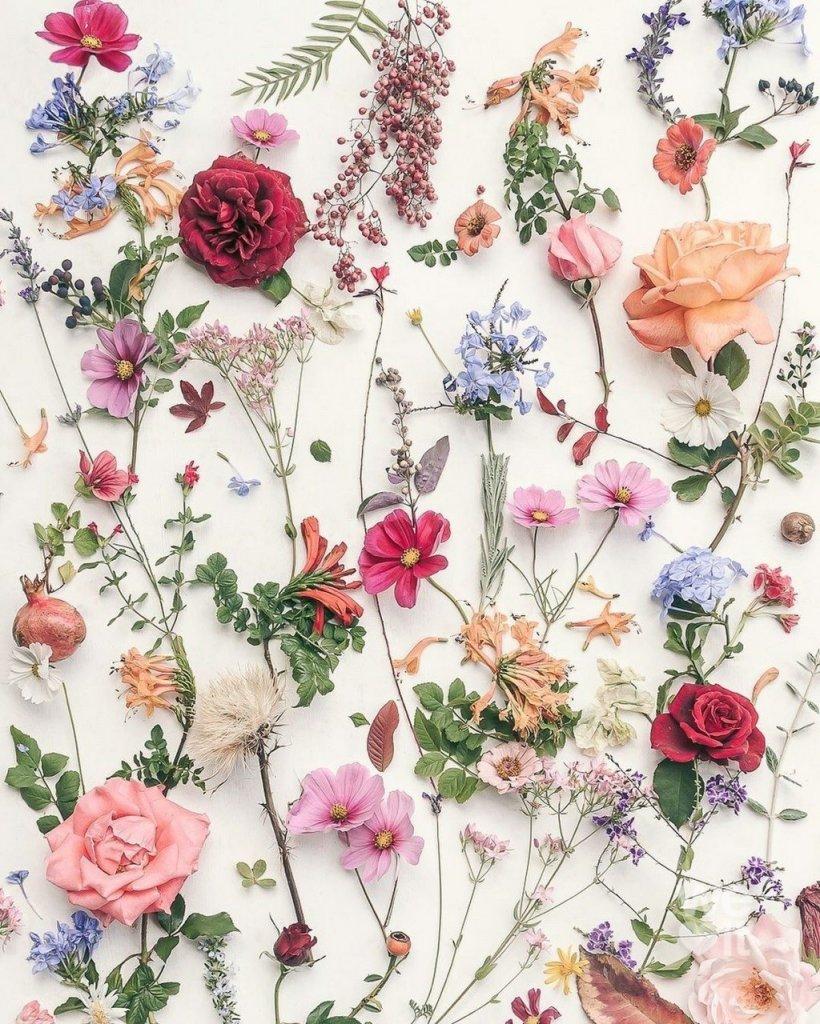 kk çiçekw.jpg