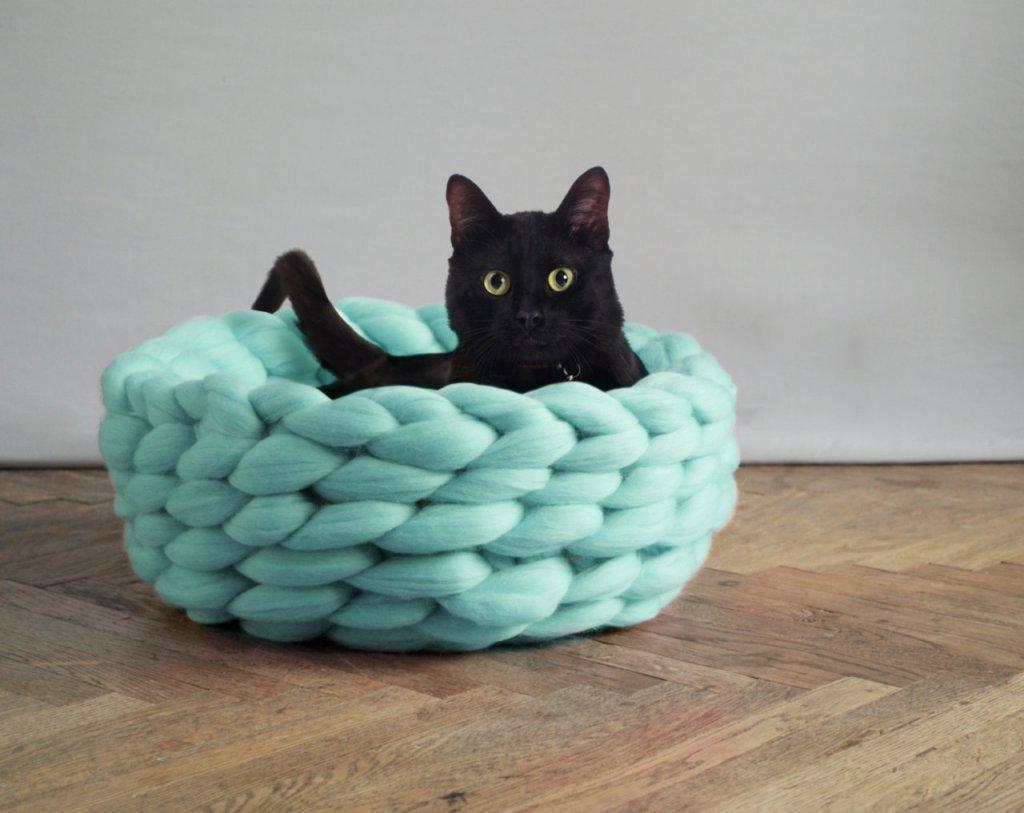 kk kedi (15).jpg