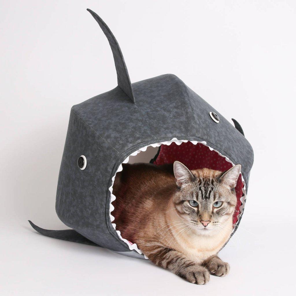 kk kedi (29).jpg
