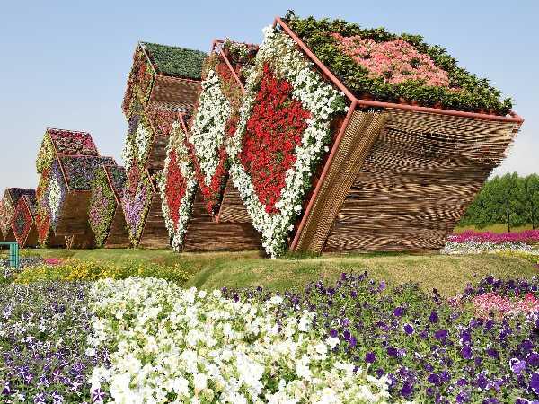 miracle-garden.jpg