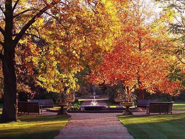 oxford_botanic_garden.jpg
