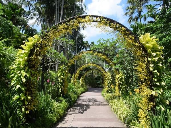 Singapur Botanik Bahçeleri.jpg