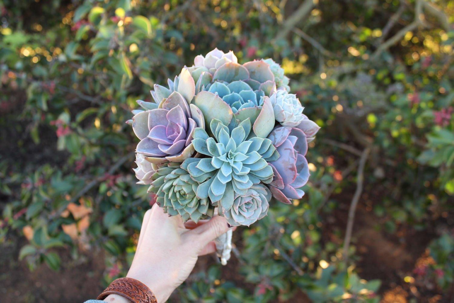 succulent_bouquet_wedding_bride_bouquets_2_2000x.jpg