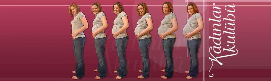 Gün Gün Hamilelik Gebelik Takvimi