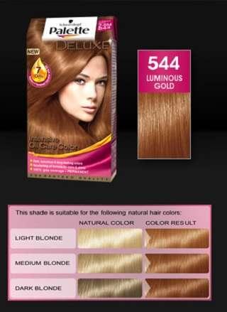Palette Saç Boyaları Ve Renk Kataloğu 2012