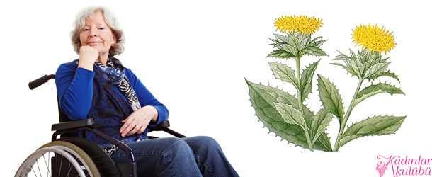 Romatizma ağrılarına bitkisel çözümler