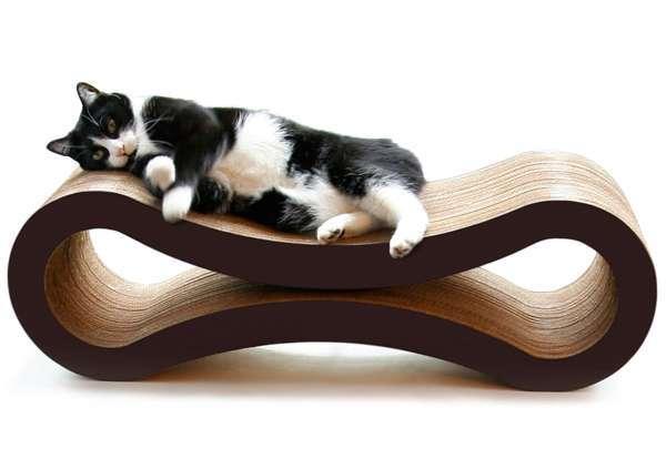 Evcil hayvanlar için ev dekorları