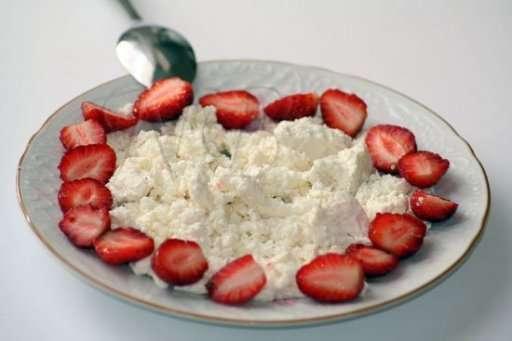 süzme peynir ve salata ile şok diyet