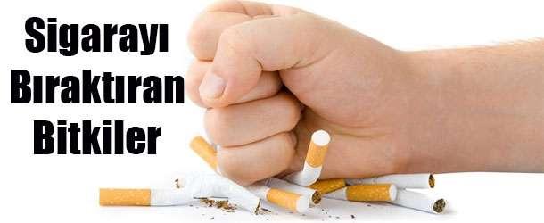 Sigarayı Bıraktıran Doğal Yöntemler