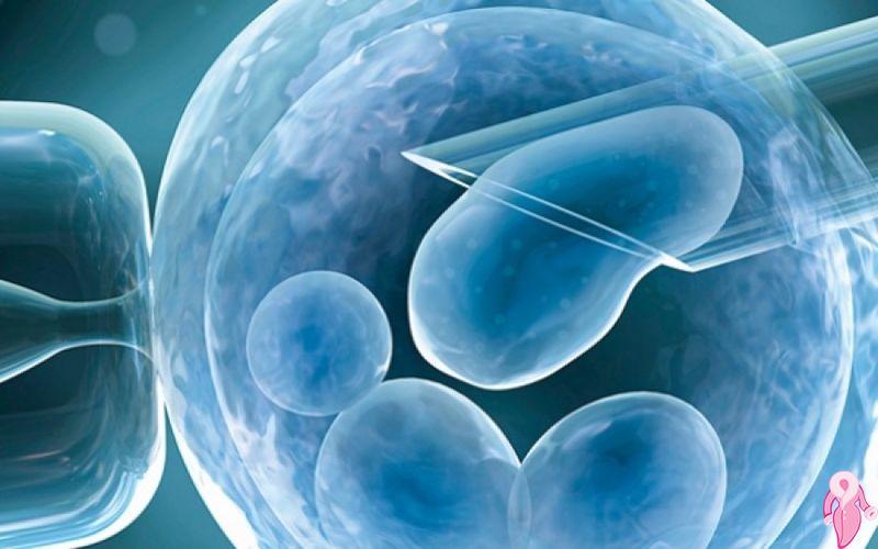 Tüp Bebek Tedavisinde Yaş Sınırı Var mı? 40-43 Yaş Arası Tüp Bebek Tedavisi Başarı Oranları Kaçtır?