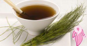 Kırkkilit Otu Çayı Nasıl Yapılır? Kırkkilit Otu Faydaları Zararları Nelerdir?