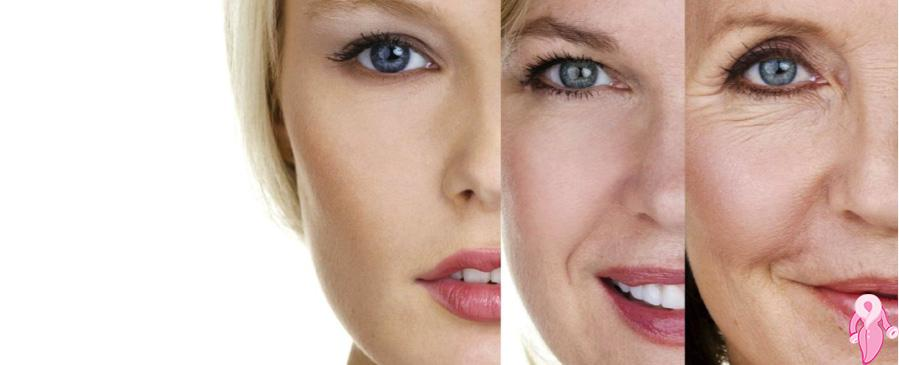 Wrinkle Treatment with Herbal Methods