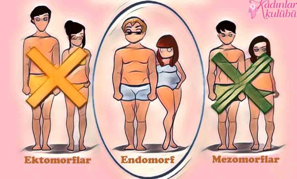 Endomorf Diyeti Nedir