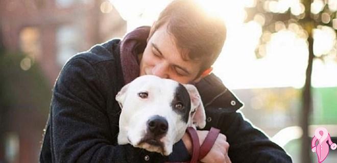 Evcil hayvanlara alerjisi olanlara güzel haber!