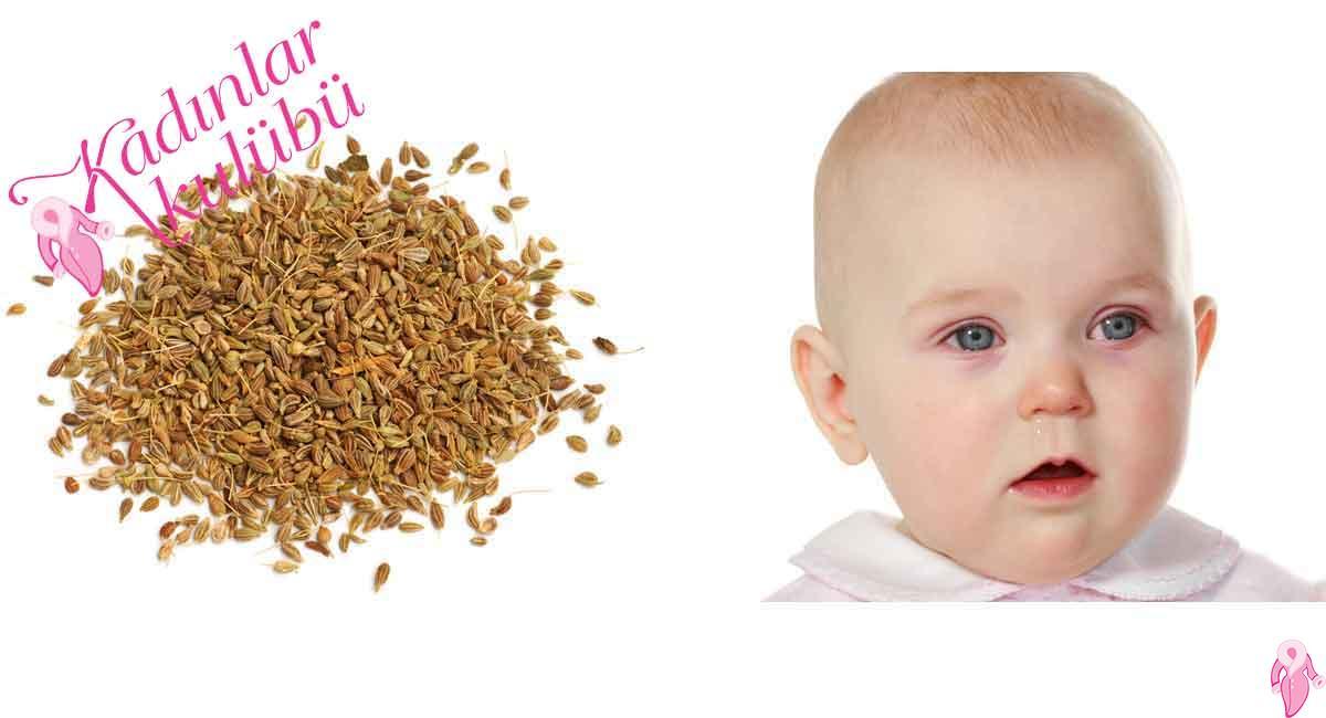 Bebeklerde Gaz Sancısı Ve Rahat Uyuması İçin Bebeklere Anason Çayı Verilir Mi?