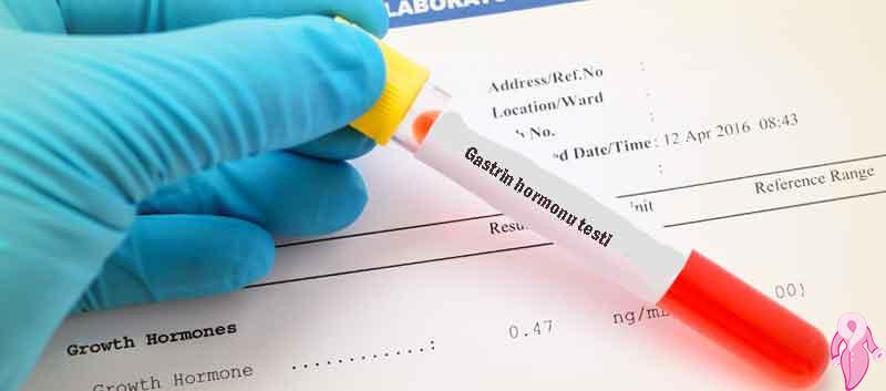 Gastrin Nedir, Gastrin Hormonu Yüksekliği Düşüklüğü Ve Normal Değerleri