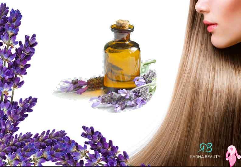 Lavanta Yağının Saça Faydaları Nelerdir? Nasıl Uygulanır?