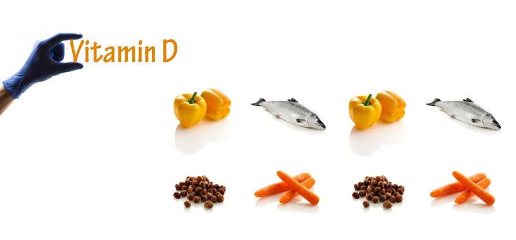 d vitamini eksikliği ne yemeli