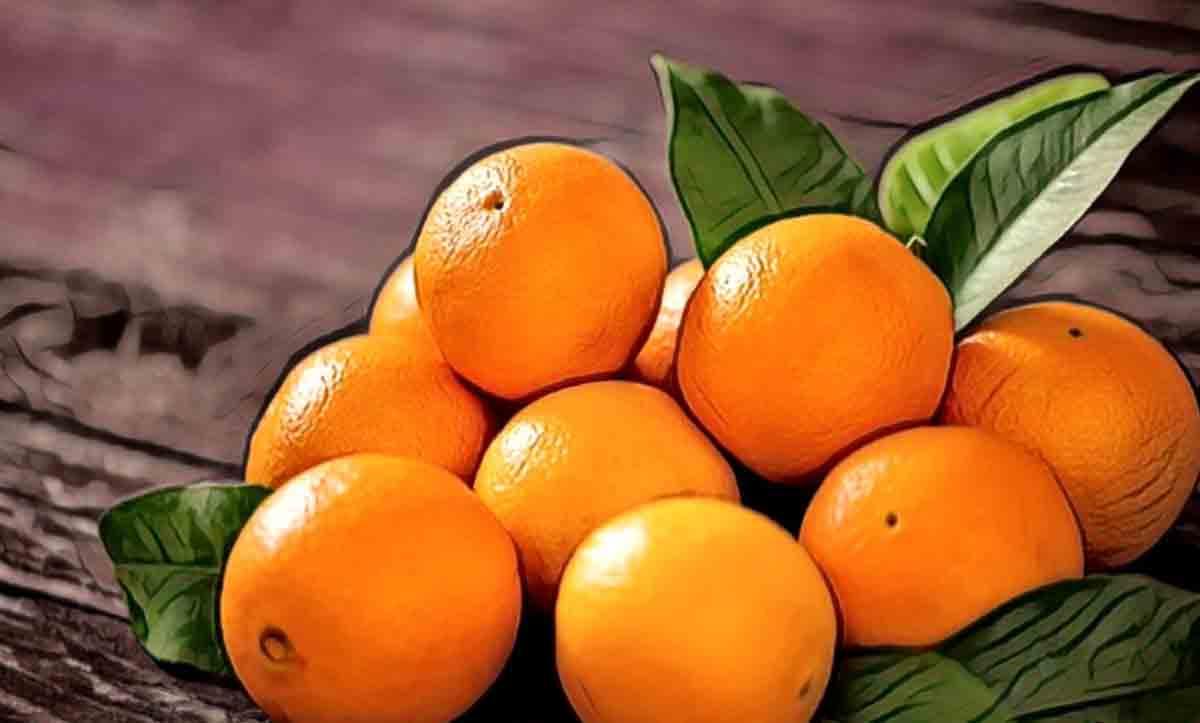 hamilelikte portakal yemek